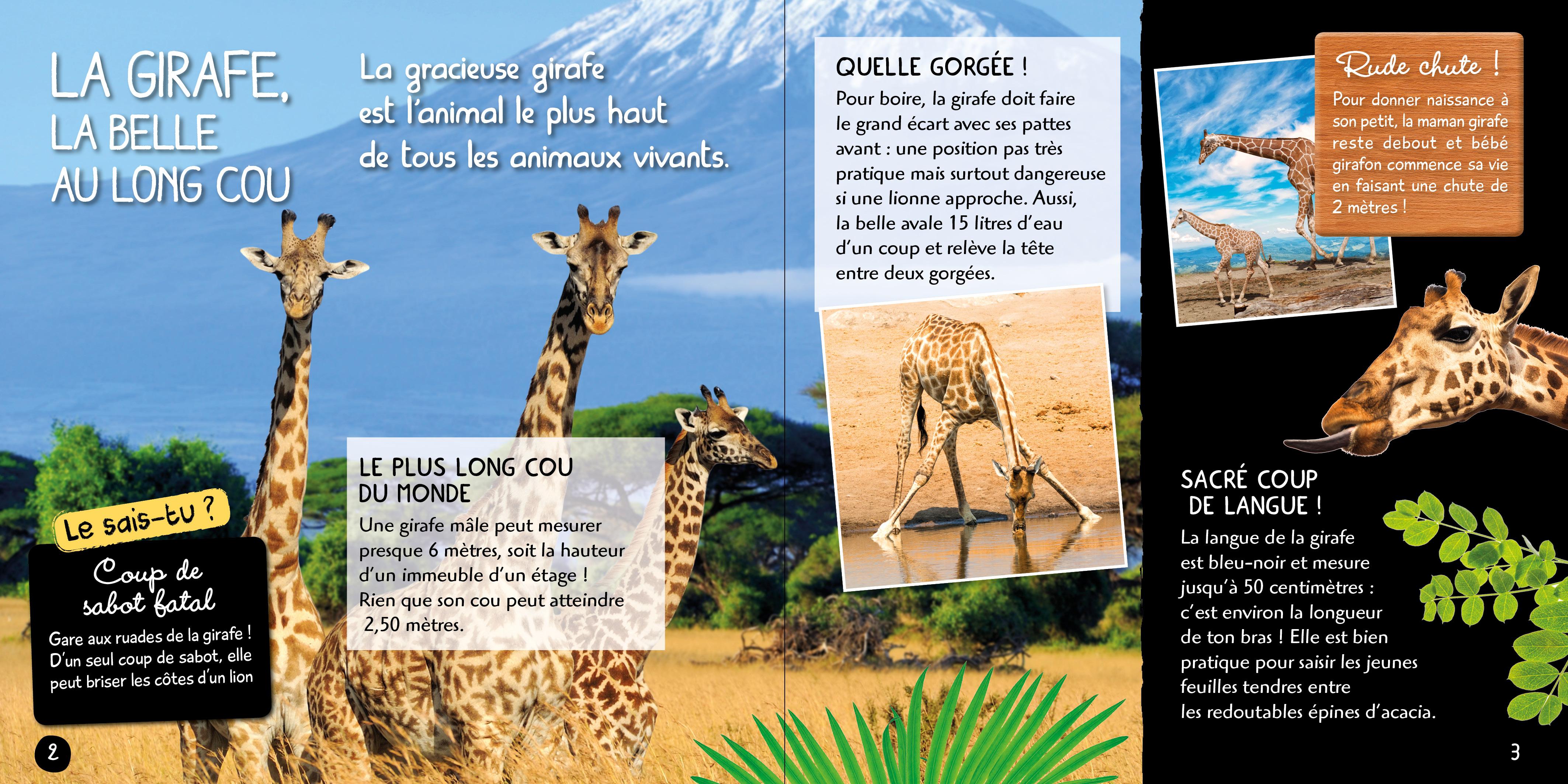 Je Decouvre Les Animaux De La Savane Avec Une Saison Au Zoo