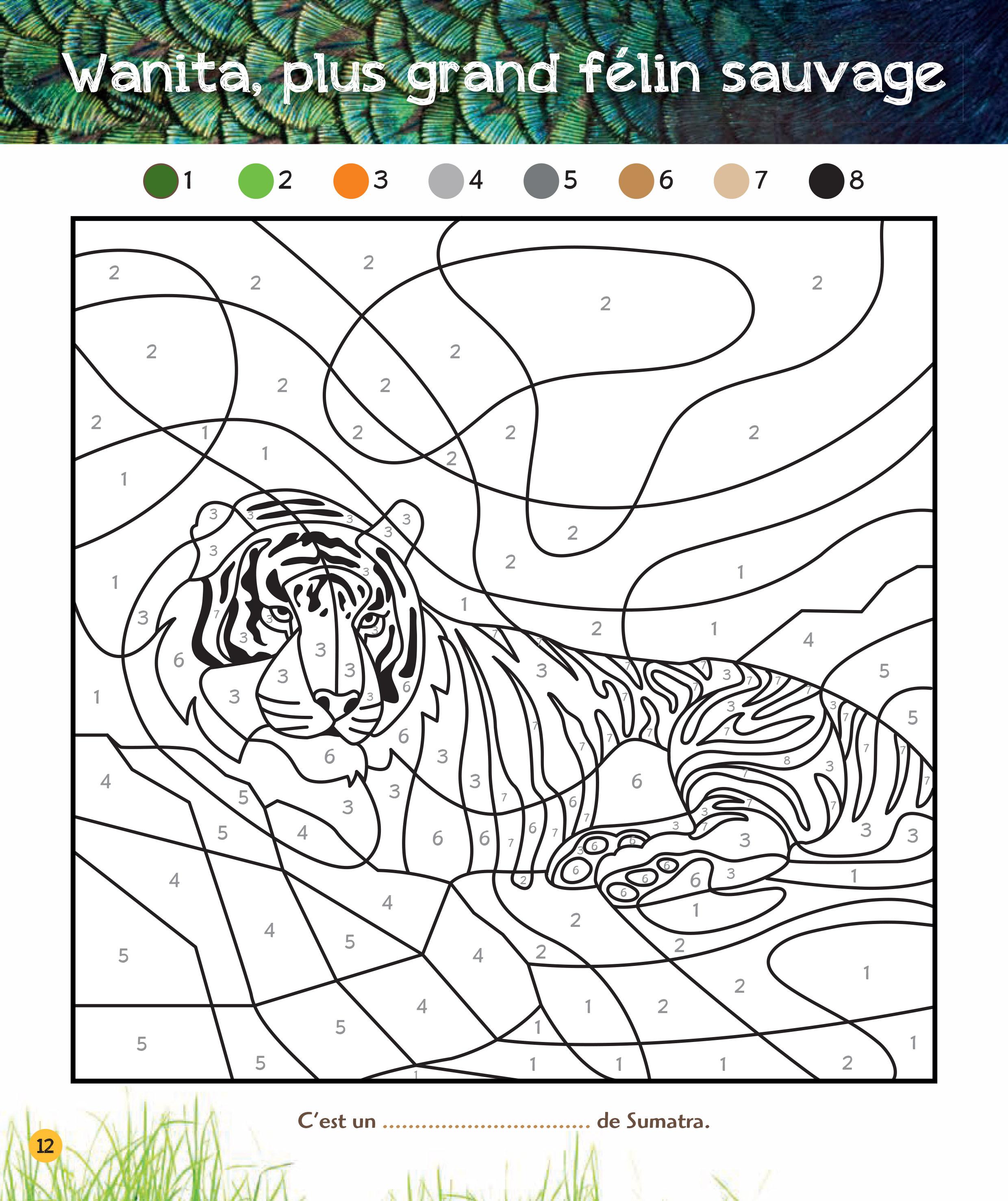 Coloriages Magiques Une Saison Au Zoo Special Jungle Editions Larousse