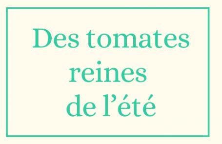 Des tomates reines de l'été