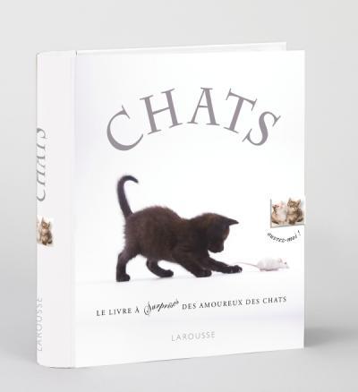 Chats - nouvelle présentation