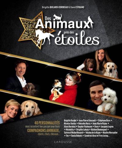 Des animaux près des étoiles