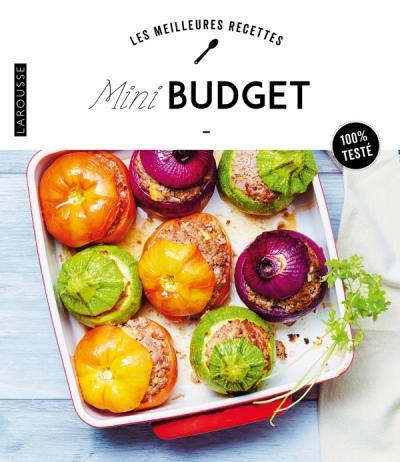 Mini-budget