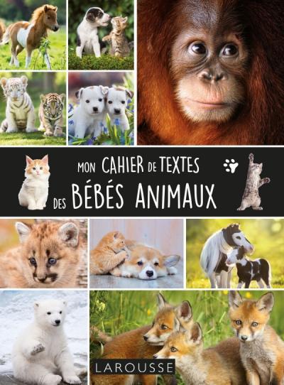 Cahier de textes bébés animaux