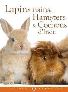 Lapins nains, Hamsters et Cobayes