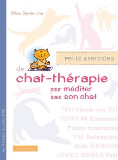 Petits exercices de chat-thérapie pour méditer avec son chat