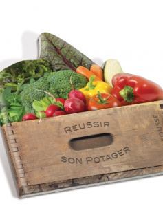 Réussir son potager (panier de légumes)