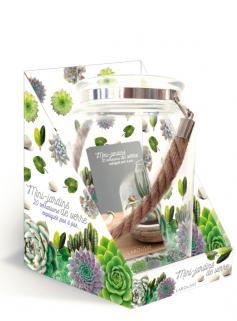 Mini-jardins de verre