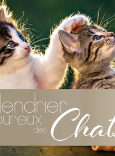 Calendrier des amoureux des chats