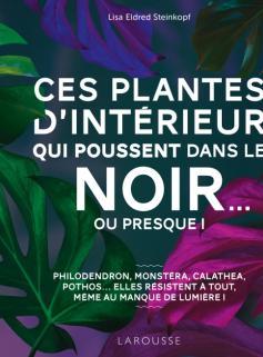 Ces plantes d'intérieur qui poussent dans le noir... ou presque !