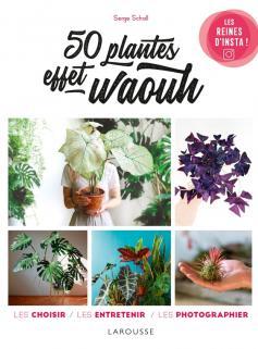 50 plantes effet waouh