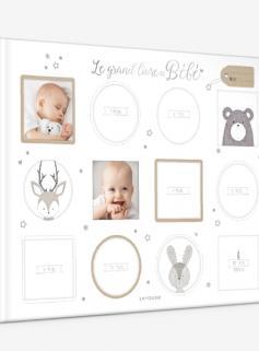 Le grand livre de bébé