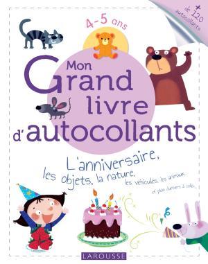Mon Grand livre d'autocollants - L'anniversaire, les objets, la nature...