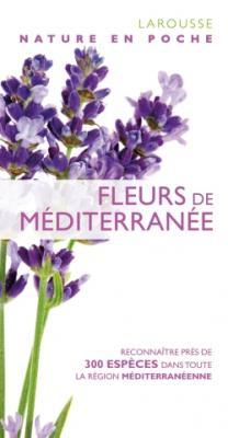 Fleurs de Méditerranée - nouvelle présentation
