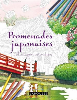 Promenades japonaises Coloriages anti-stress