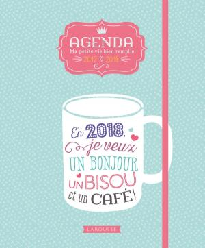 Agenda ma petite vie bien remplie 2017-2018