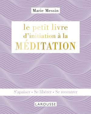 Le petit livre d'initiation à la MEDITATION
