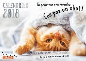 Calendrier 2018 Tu peux pas comprendre t'es pas un chat