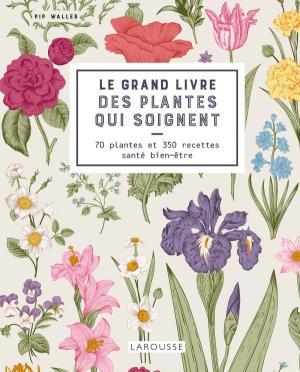 Le grand livre des plantes qui soignent