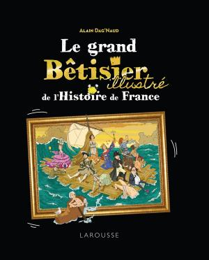 Le Grand Bêtisier de l'histoire de France illustré