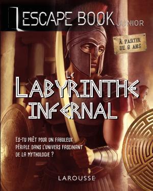 ESCAPE BOOK -Le Labyrinthe infernal