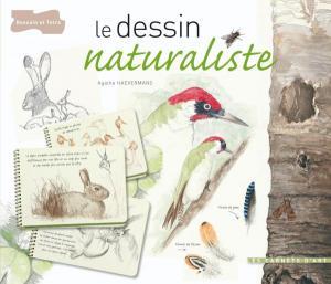 Le dessin naturaliste