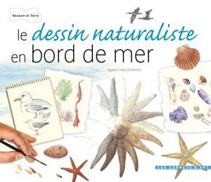 Le dessin naturaliste - Bords de mer
