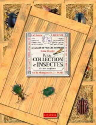 Petite collection d'insectes de nos régions
