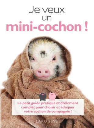 Je veux un mini-cochon !