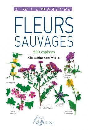 Fleurs sauvages - nouvelle présentation