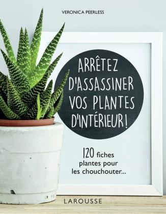 Arrêtez d'assassiner vos plantes d'intérieur