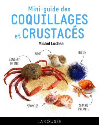 Le mini-guide des coquillages et crustacés