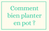 Comment bien planter en pot ?