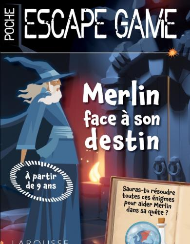 Escape de game de poche Junior - Merlin échappera-t-il à son destin?