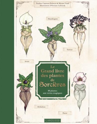 Le Grand Livre des plantes de sorcières